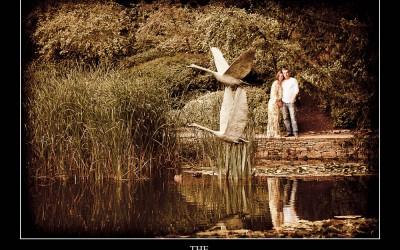 Le Manoir aux Quat'Saisons Pre-Wedding Shoot | Mandy & Alex