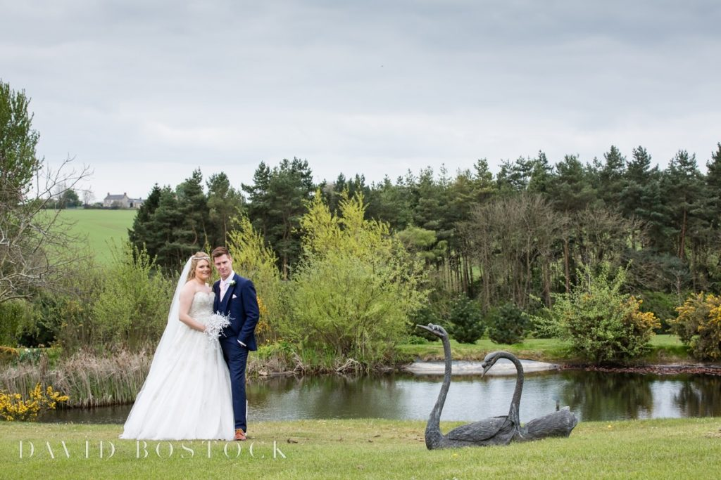 couple and swans
