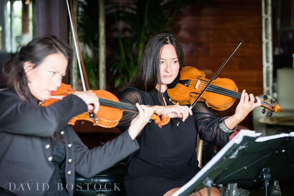 The Crazy Bear string quartet